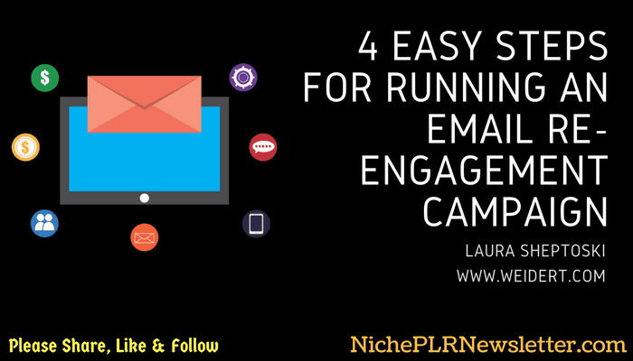Email Re-Engagement Campaign