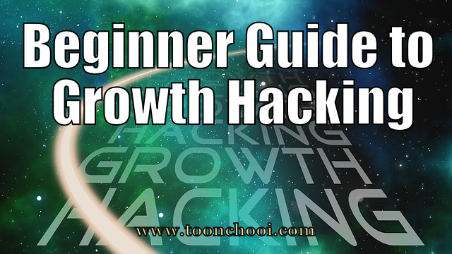 Beginner Guide to Growth Hacking